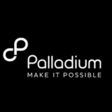 The Palladium Group
